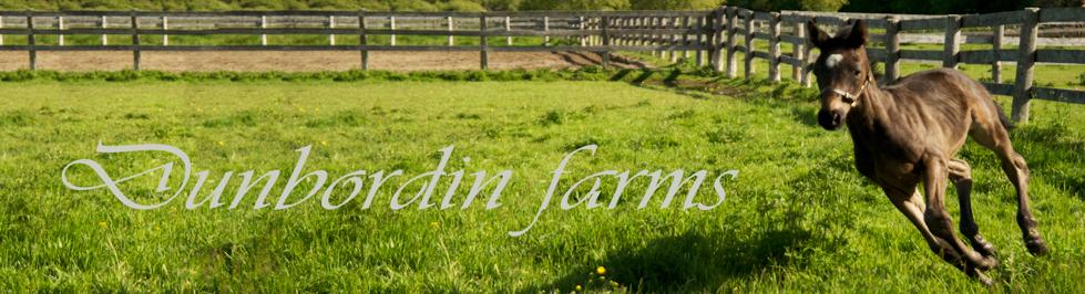 Dunbordin Farms