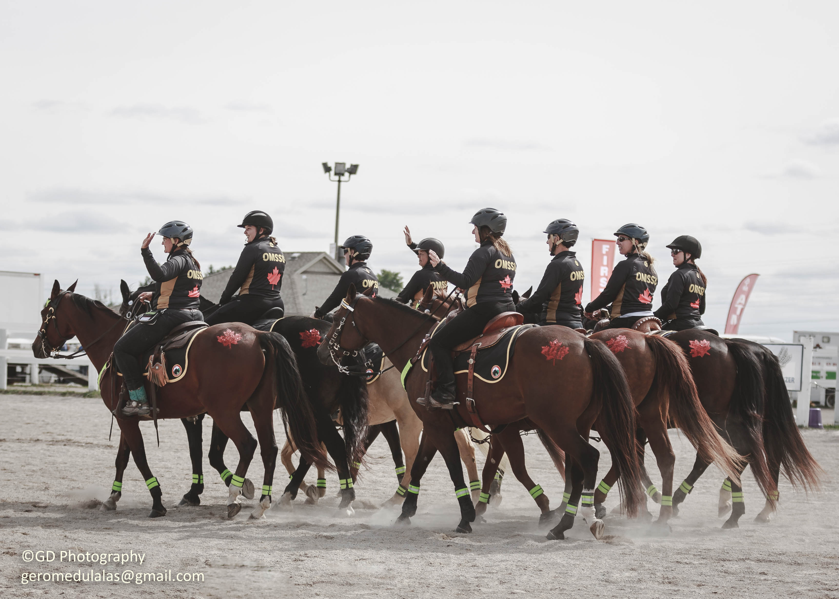 Ontario Mounted Special Services Unit