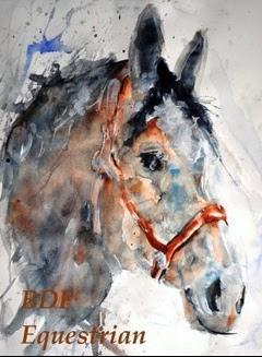 BDF Equestrian