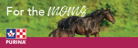 Purina Equine March Banner